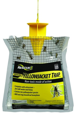 YELLOW-JACKET-TRAP