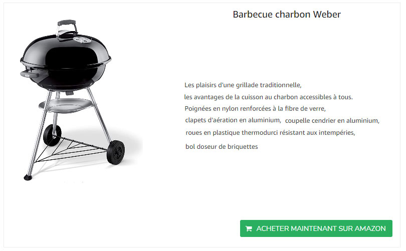 barbecue-charbon-weber